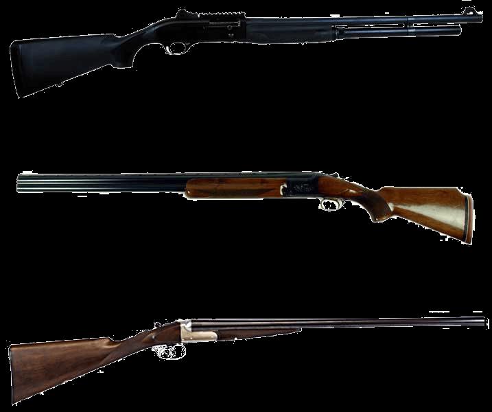 Shotguns category image